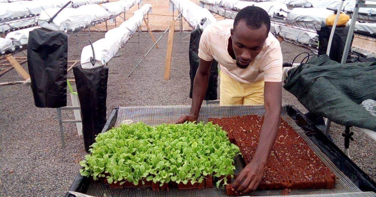 """""""Queremos espalhar tecnologia e mudar a forma como se faz a agricultura em Cabo Verde"""""""
