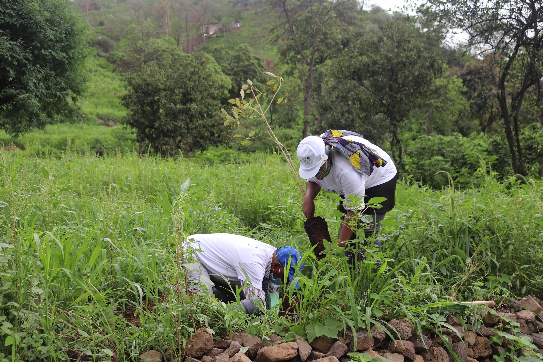 Cabo Verde lança novo compromisso nacional sobre o clima no âmbito do Acordo de Paris