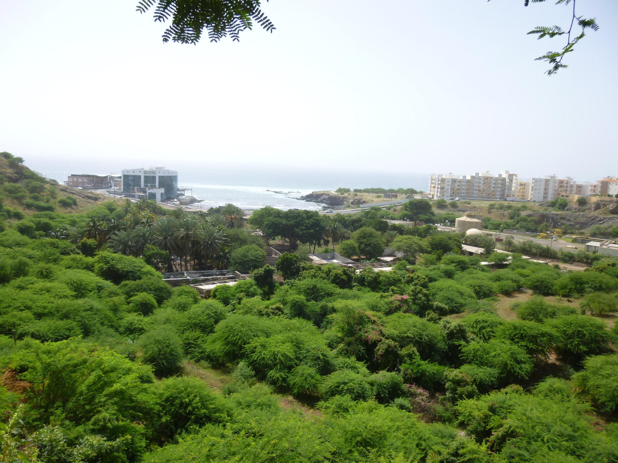 """FAO lança Programa de Ação """"Cidades Verdes"""" para África"""