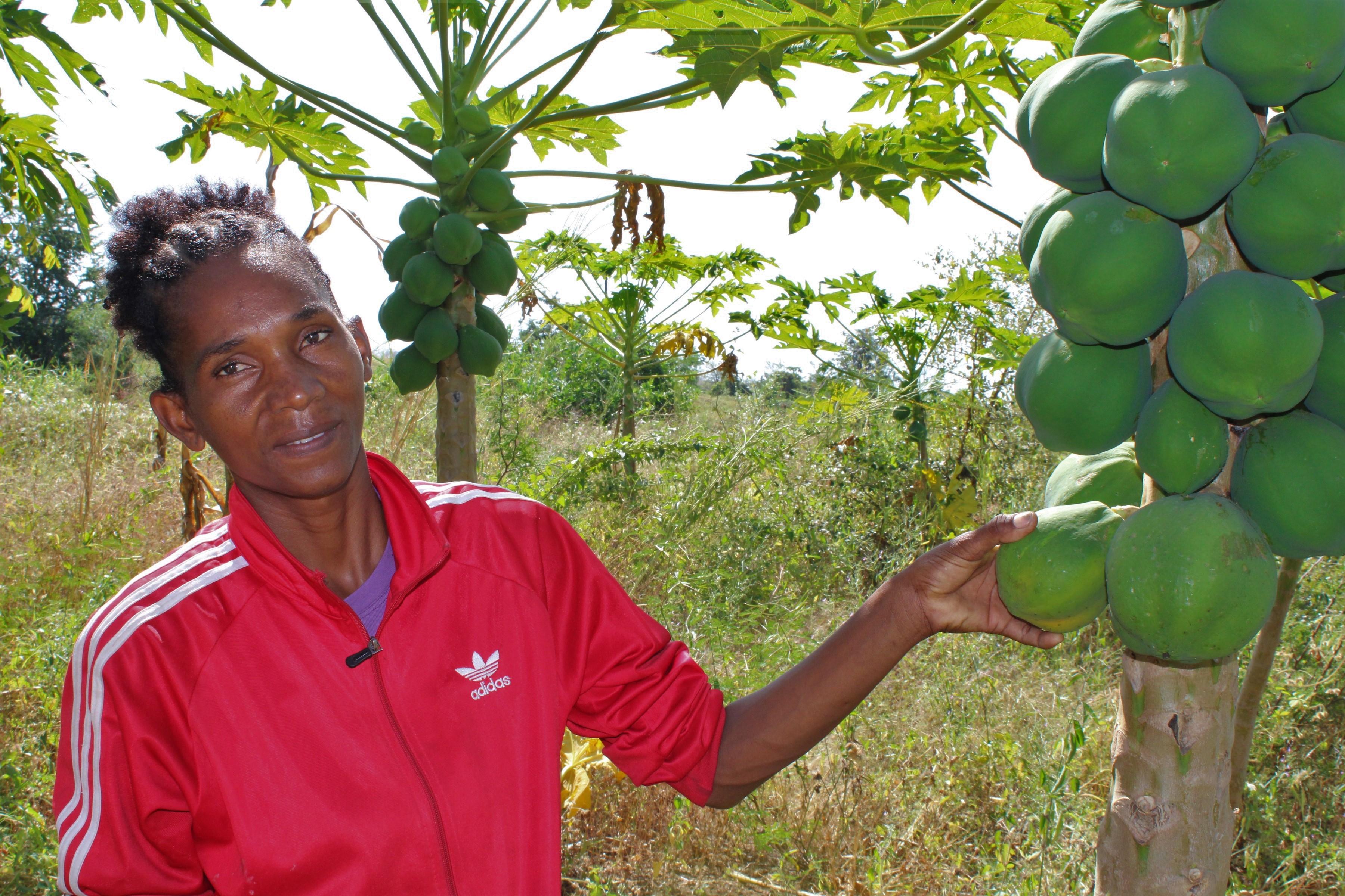 """""""A fruticultura permitiu-me investir na educação dos meus filhos e melhorar as condições de vida da minha família"""""""